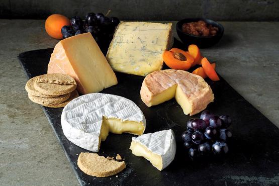 Modern Cheese Selection