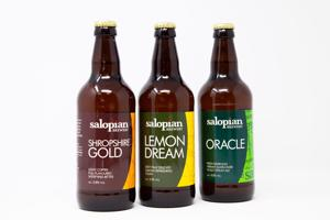 Salopian Brewery Selection (Case of 12