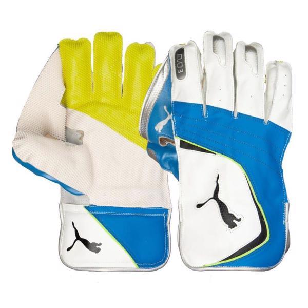 Puma EVO 3 WK Gloves WHITE/AZURE