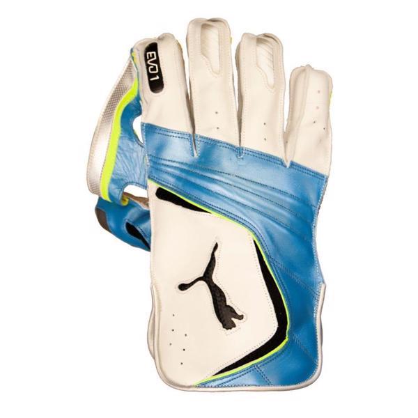Puma EVO 1 WK Gloves WHITE/AZURE