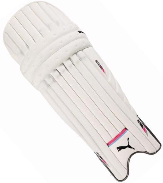 Puma evoFLEX 2 Batting Pads