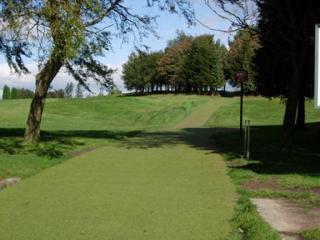 Super VerdeGrass Artificial Grass per sq