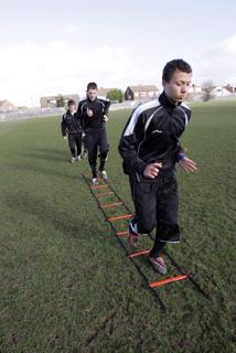 Precision Training Speed Agility Ladder