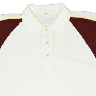 Morrant International Cricket Shirt