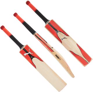 Puma evoSPEED 3.17Y Cricket Bat JUNIOR