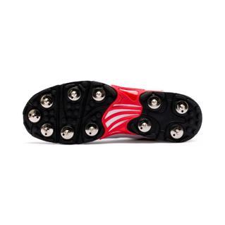 Puma Cricket 19.2 Spike Shoe WHITE/RED