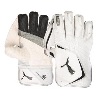 Puma EVO SE WK Gloves WHITE