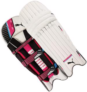 Puma evoFLEX 2 Batting Pads