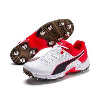 Puma Cricket 19.1 Spike Shoe