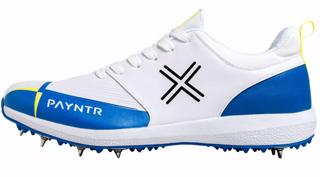 Payntr V Spike Cricket Shoes JUNIOR BL