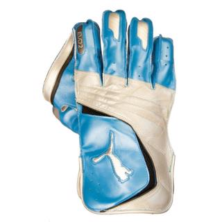 Puma EVO 2 WK Gloves AZURE/WHITE