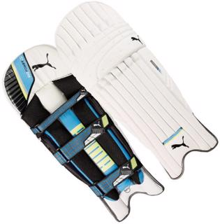 Puma evoPOWER 2 Batting Pads