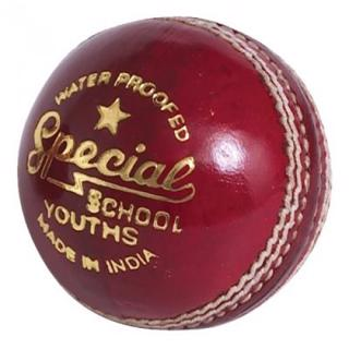 Readers Special School Cricket Ball, J