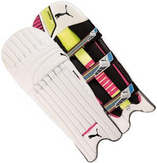 Puma evoPOWER 2 TRICKS Batting Pads