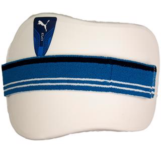 Puma Evo Cricket Chest Pad AZURE
