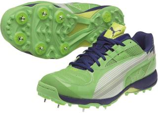 Puma evoSPEED Cricket Shoe, GREEN