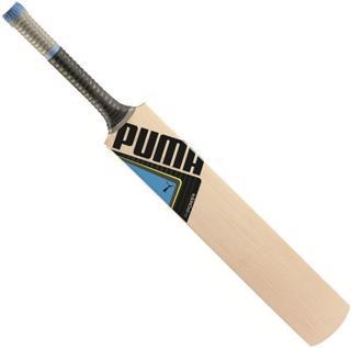 Puma evoPOWER 2Y Cricket Bat JUNIOR