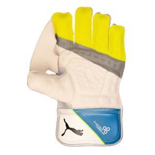 Puma EVO 2 WK Gloves WHITE/AZURE