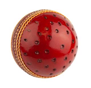 Dukes Swinger Training Cricket Ball