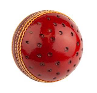 Dukes Swinger Training Cricket Ball