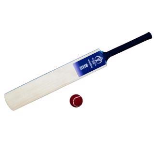 Gray Nicolls ICC CWC19 England Winners%2